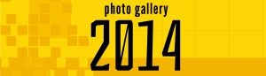 icons_photo gallery 2014_WPheader