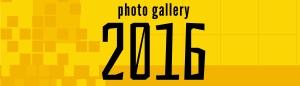 icons_photo gallery 2016_WPheader